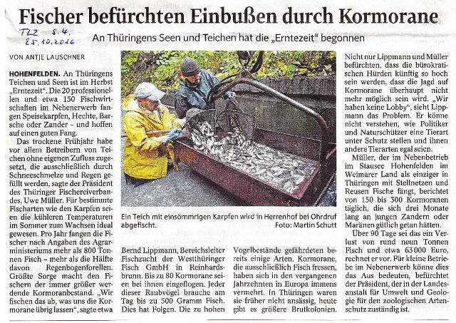 fischer-befuerchten-einbussen-durch-kormorane-tlz-v-25-10-2016-kl