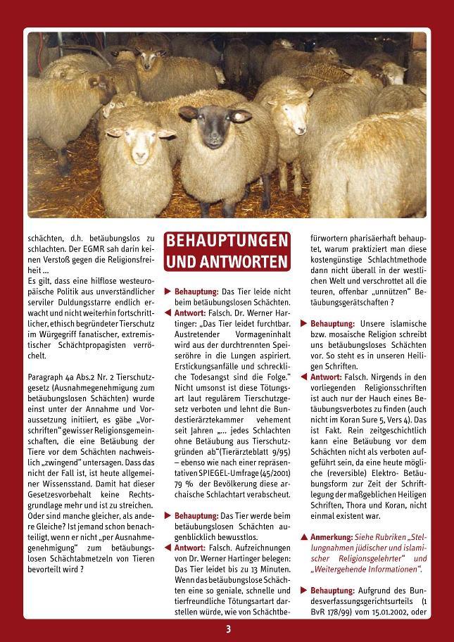 Schaecht2013sonderdruck_03 - kl.
