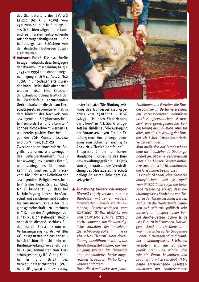 Schaecht2013sonderdruck_04 - kl.