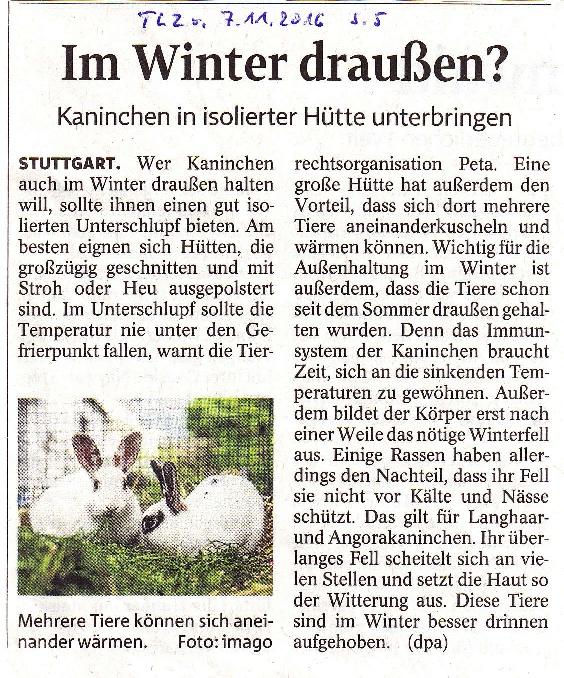 im-winter-draussen-tlz-v-7-11-2016